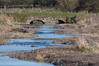 Picturesque view of the River Nar below Castle Acre! (Pic: Norfolk Rivers Trust)